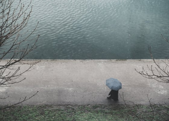 Person walking by the lake on a rainy day