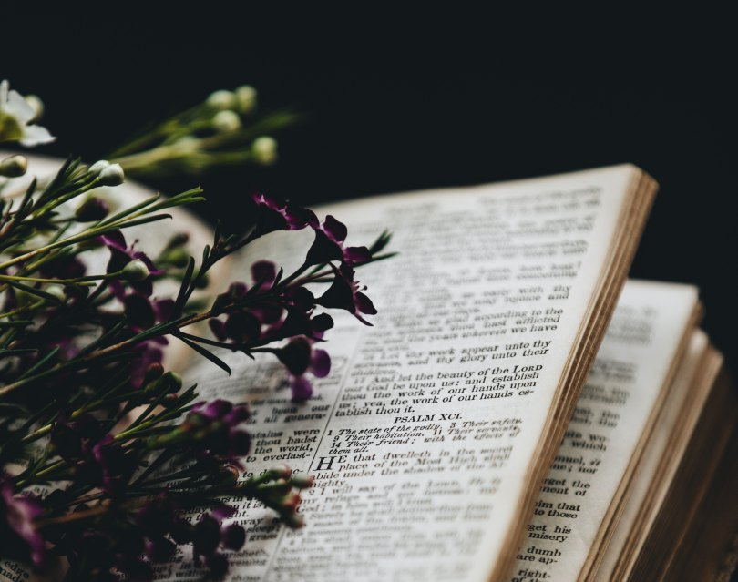 Flowers and the Bible