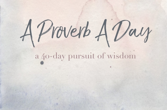 A Proverb A Day Cover