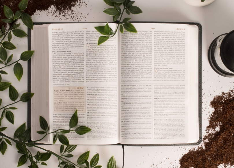 Bible, coffee, and plants
